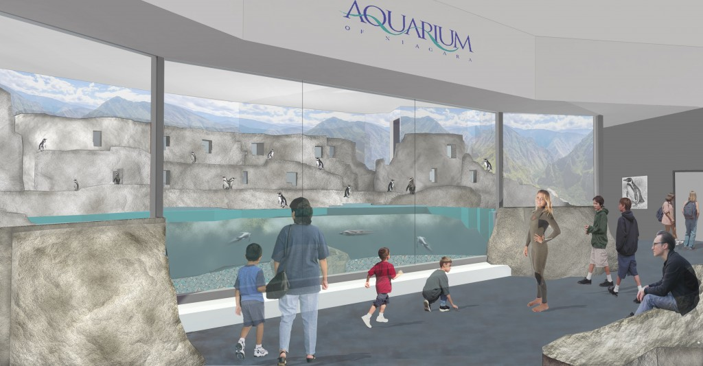 AON Penguin Exhibit Rendering