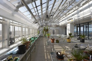 The greenhouse is one of the many features that promotes sustainability learning.