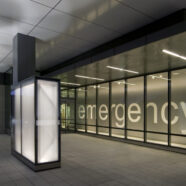 Mental Health in the Emergency Department: Evolving Care Models to Meet Patient Needs