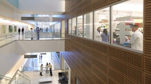 Project: Kaleida Health's Gates Vascular Institute Interior Glass