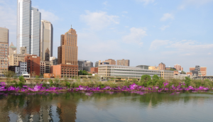 A depiction of what the city skyline with redbuds would look like in the spring.