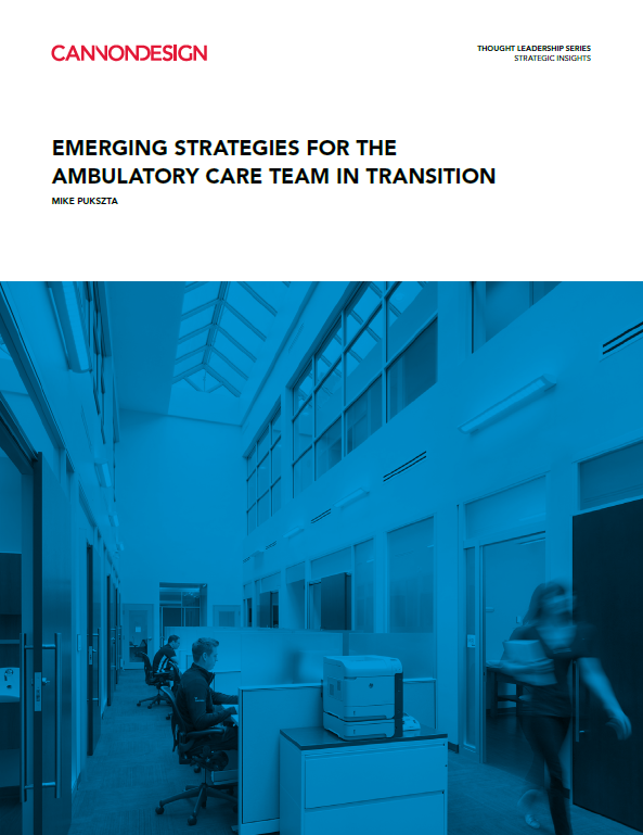 emerging strategies for the ambulatory care team in transition
